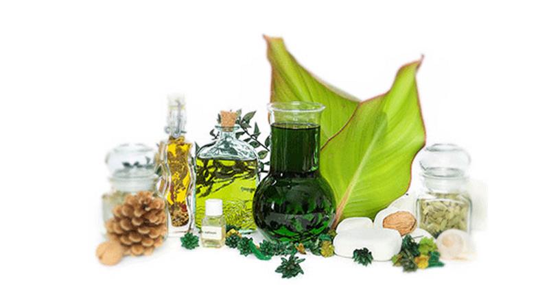 Prodotti naturali per capelli: la natura al servizio del benessere del capello